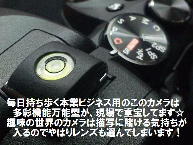 本業ビジネス・カメラ