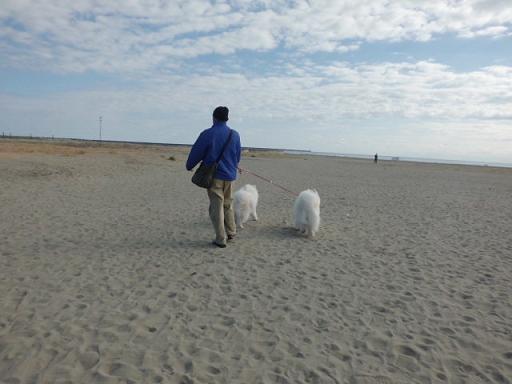 2014年1月5日 大洗サンビーチ・アウトレット 001