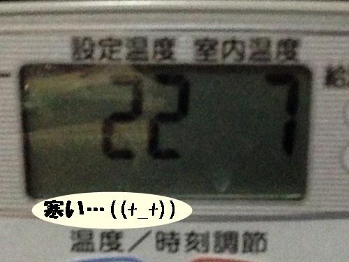 761.jpg