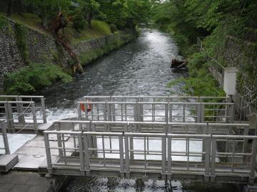 hamura06182.jpg