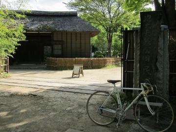 jidayubori0502.jpg