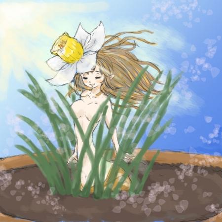 陽光浴びる早春水仙