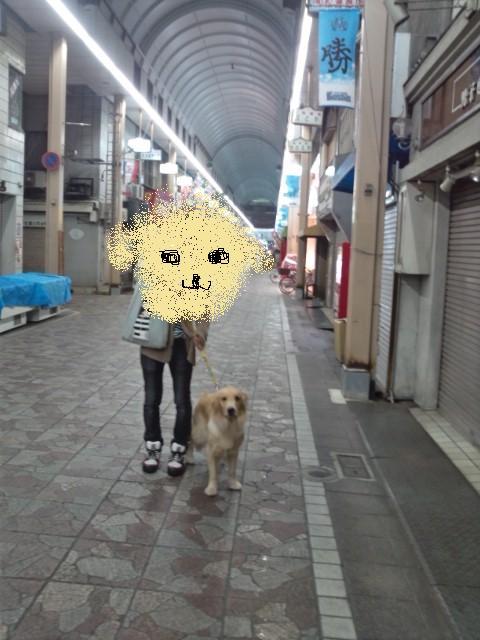横浜橋商店街通路