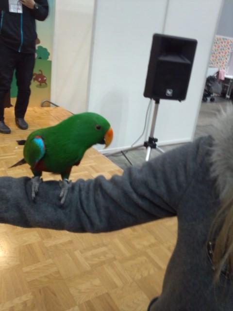 鳥サーカス 記念撮影