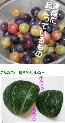 20130929_okitaraiina.jpg