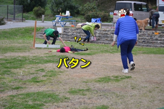 DSC_1513-003.jpg
