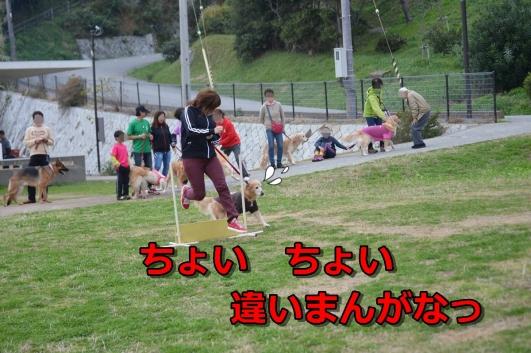 DSC_1550-040.jpg