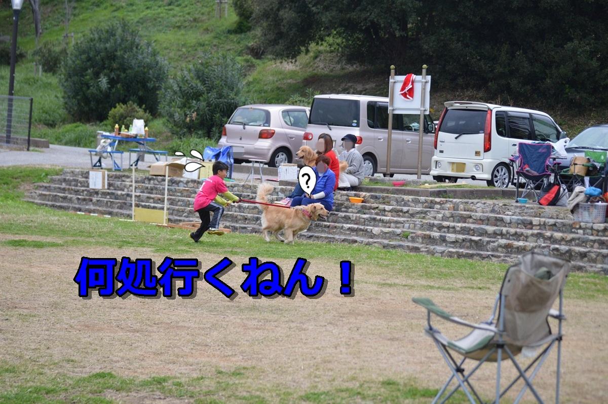 DSC_1589-003.jpg