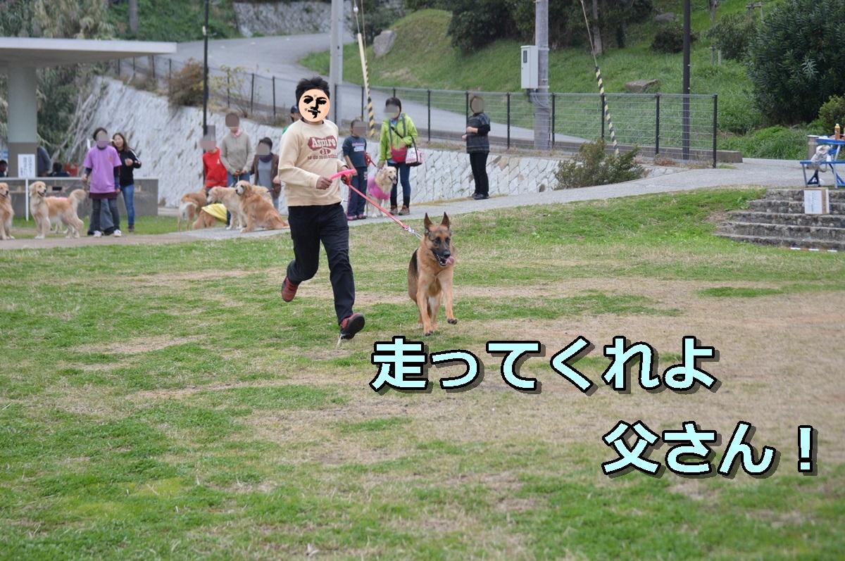 DSC_1590-004.jpg