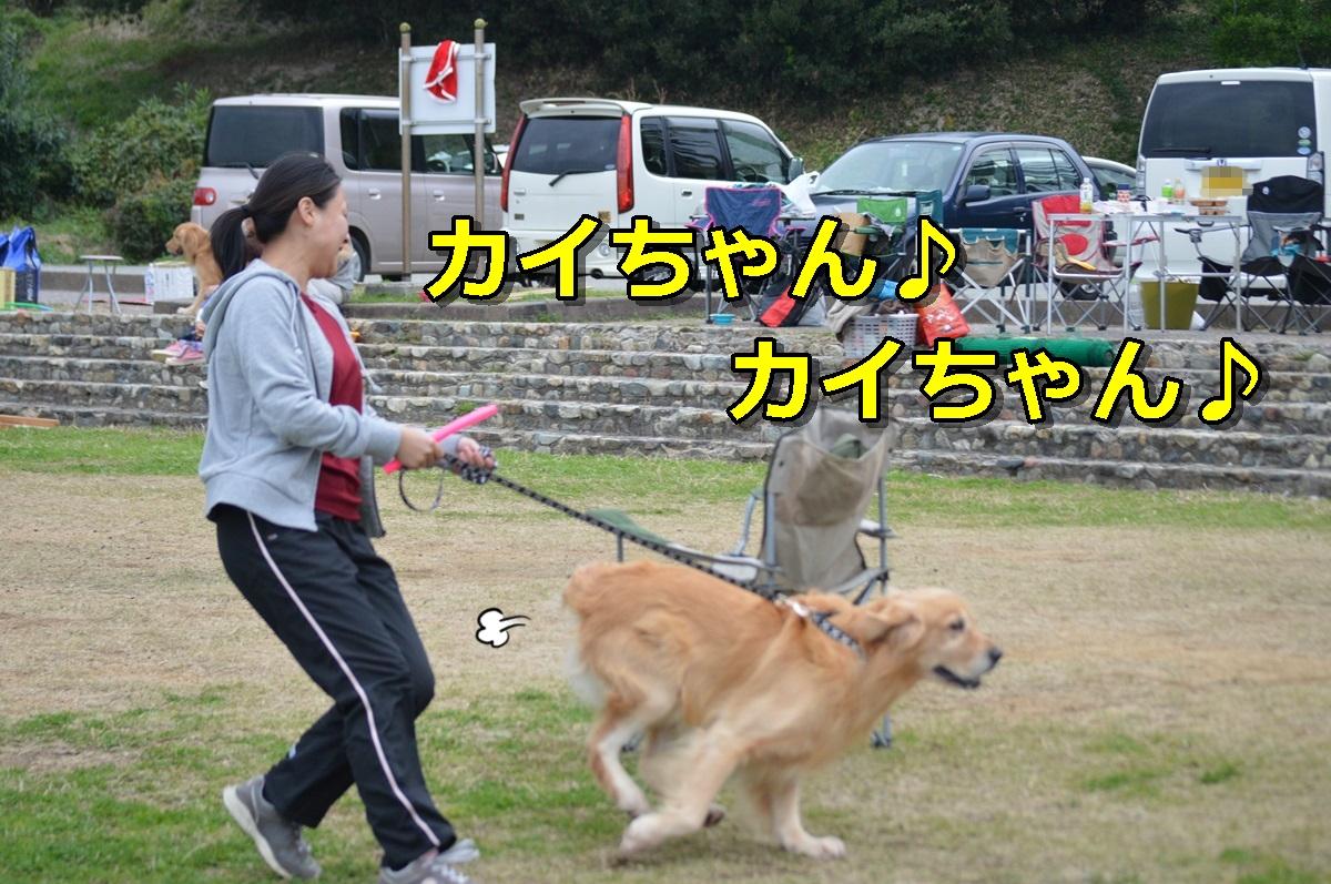 DSC_1644-058.jpg
