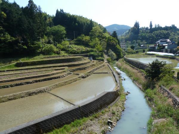 大洲蔵川村