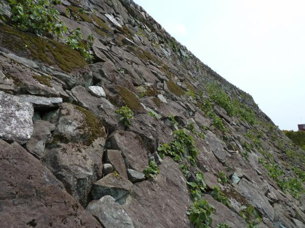 大洲城石垣8