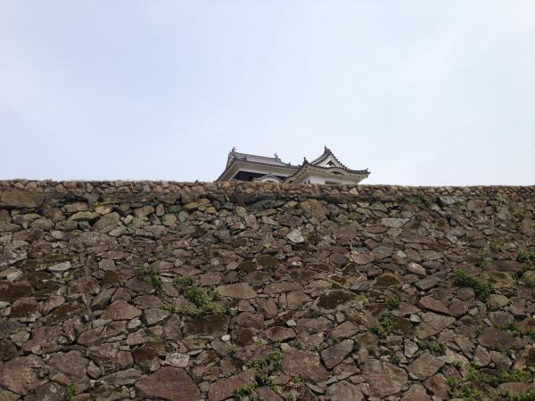 石垣と大洲城4