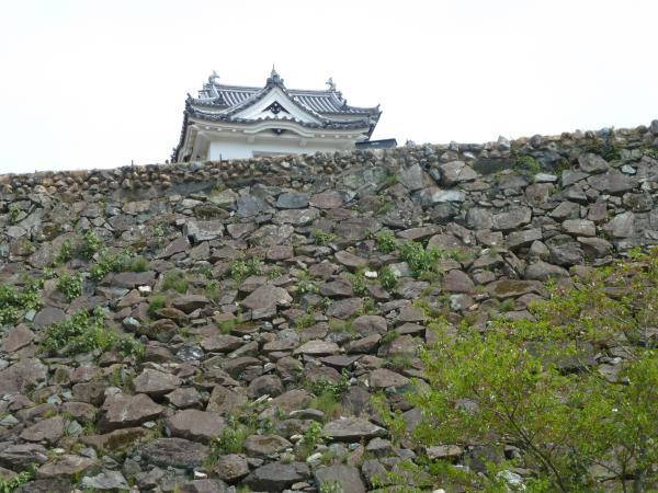 石垣と大洲城5