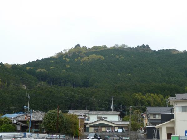 松葉城がある山1