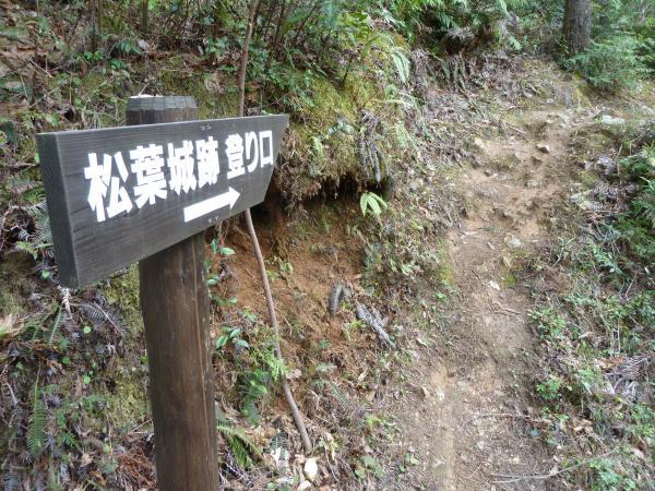 松葉城登山道4