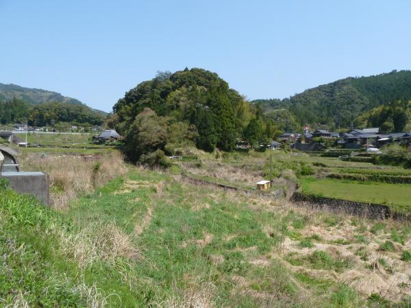 日吉風景1
