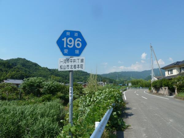 県道196号線