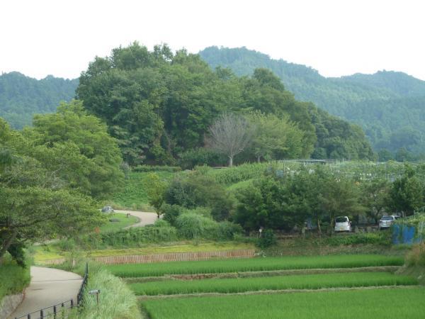 文武天皇陵7