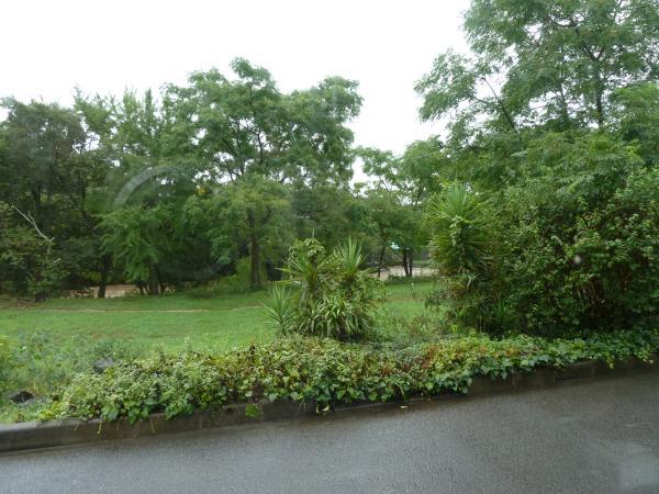 石手川公園3