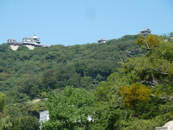 松山城遠望2