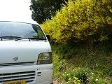 010_20130608003602.jpg
