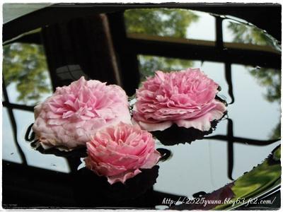 F20130608花と器のハーモニー07