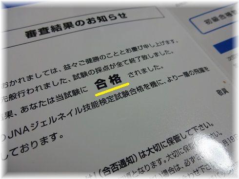DSC09109a.jpg