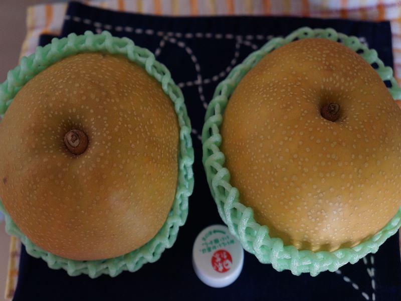 金沢の豊水梨