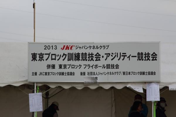 IMG_1129東京ブロック 訓練競技会 2013_東京ブロック 訓練競技会 2013_