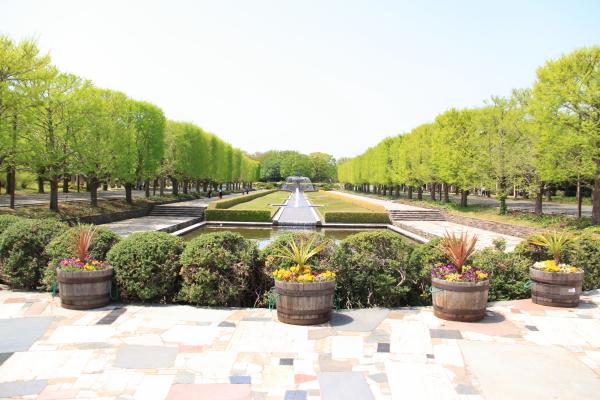 IMG_1300昭和記念公園2昭和記念公園2