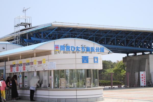 IMG_9576北八朔公園ひたち海浜公園