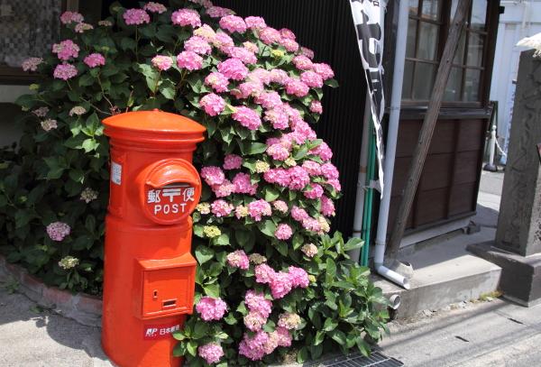 IMG_0447鎌倉にて鎌倉にて