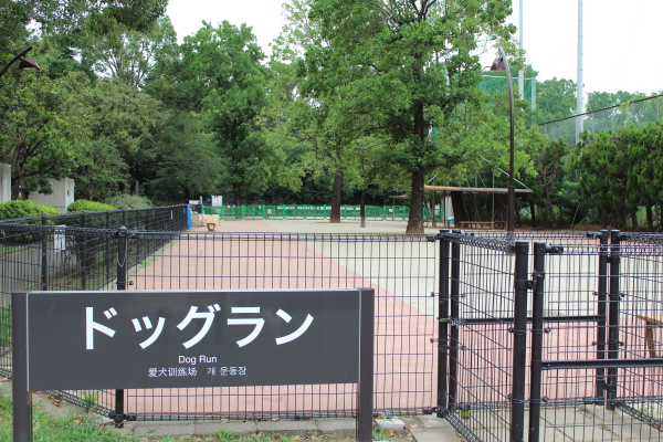 IMG_1753駒澤 新横浜駒澤 新横浜
