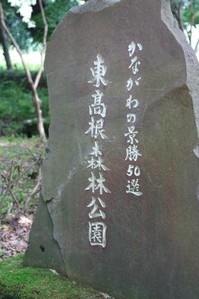 IMG_1850東高根森林公園東高根森林公園