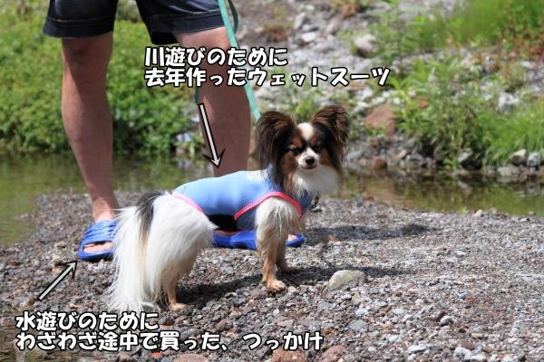 IMG_14252013年夏 米子ブログサイズ