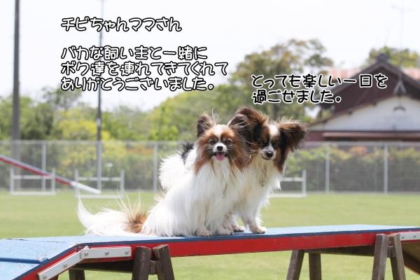 IMG_0092LADFLADF.jpg