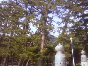 KIMG1443_convert_20130814105946出雲大社
