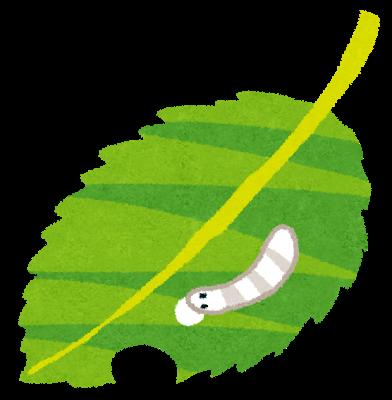 イラスト芋虫・幼虫の
