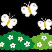 お花畑と蝶
