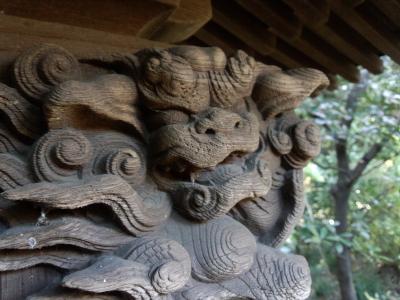 江戸川ラン