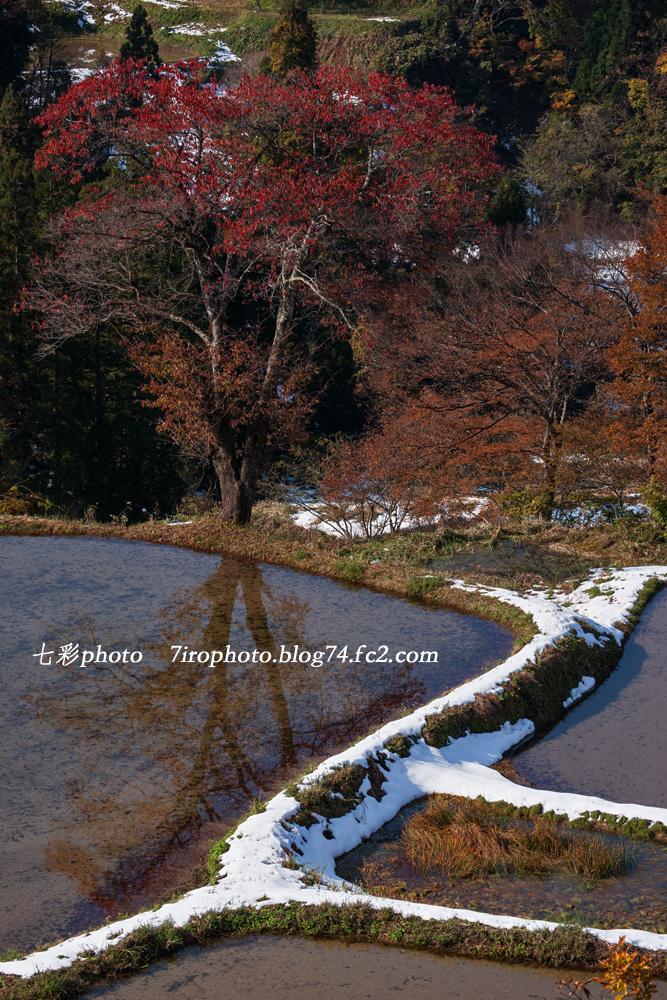 2013-11-16_新潟_0175