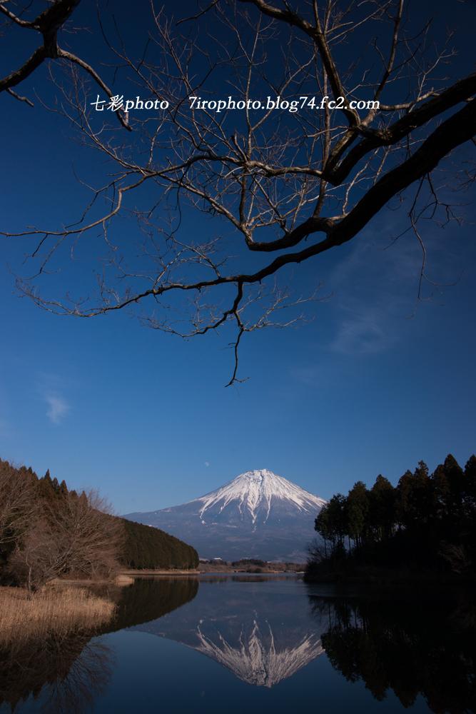 2014-01-12_富士山_1005