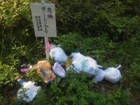 ゴミ捨て場ではありません