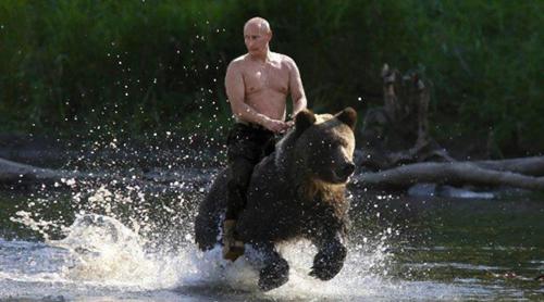 プーチンとクマ