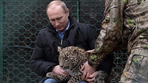 プーチンとヒョウ