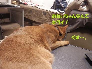 P2063846.jpg