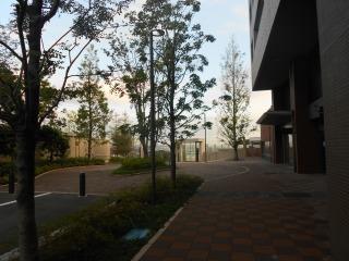 s-DSCN0190.jpg