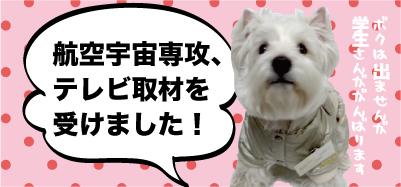 TV取材バナー