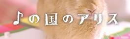 masa012_onpu_no_kuni_no_alice.png